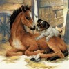 "Picture of RIOLIS Stamped Cross Stitch Kit 11.75""X11.75""-Foal & Puppy (10 Count)"